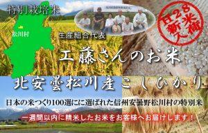 特別栽培米信州安曇野松川産こしひかり