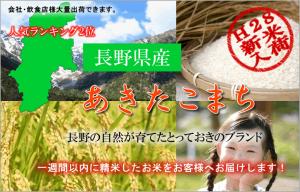長野県産あきたこまち人気ランキング2位