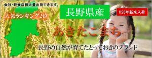 人気ランキング2位長野県産あきたこまち