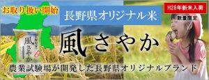 長野県オリジナル米「風さやか」